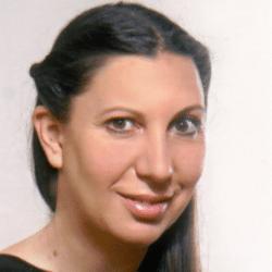 Anil Altas Brug